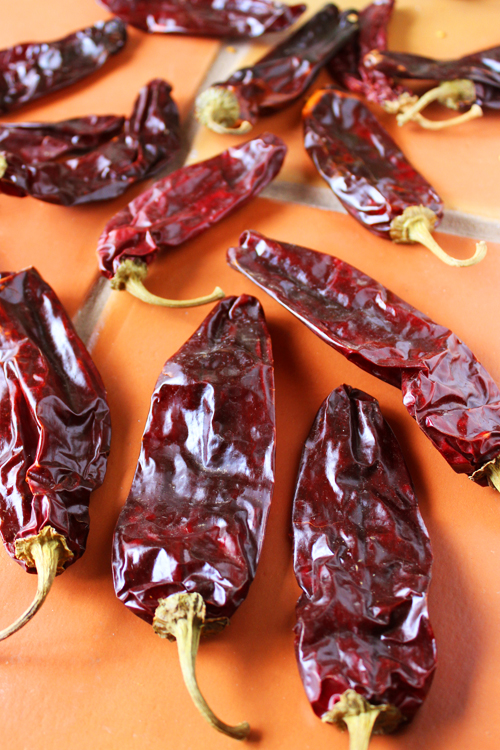 Red Chiles on Terra Cotta