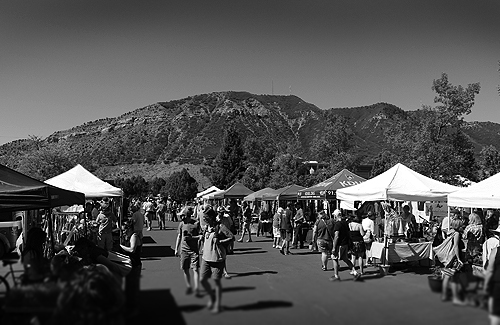 the weekend market essay Issaquah farmers market opening weekend | photo essay vendors and patrons alike were excited to see the opening of the issaquah farmers market for the first time this season april 16 outside the pickering barn.